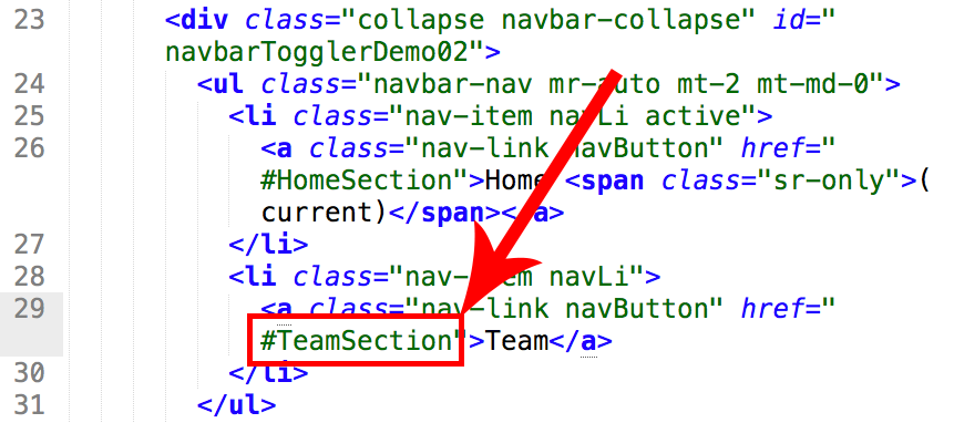 #TeamSection