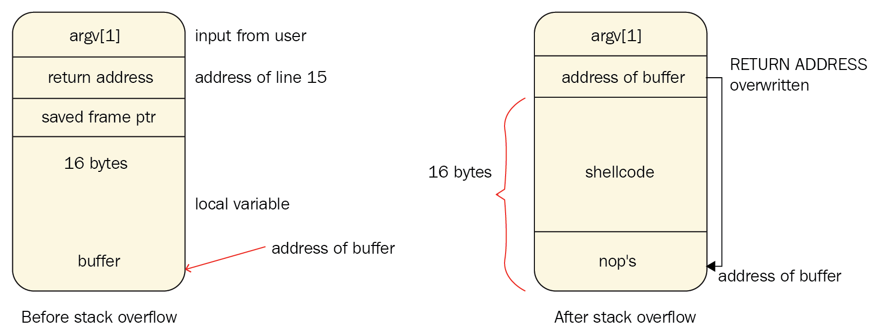 Shellcode placed in the buffer
