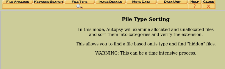 file type sorting