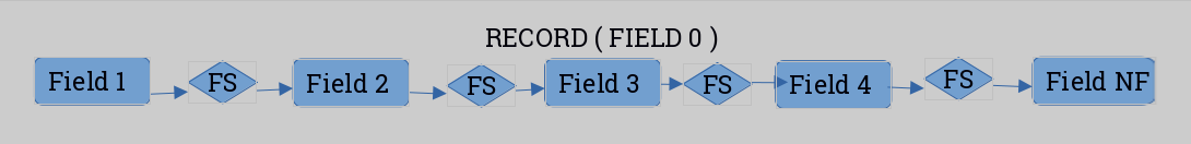 record fields